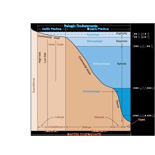 diagram01